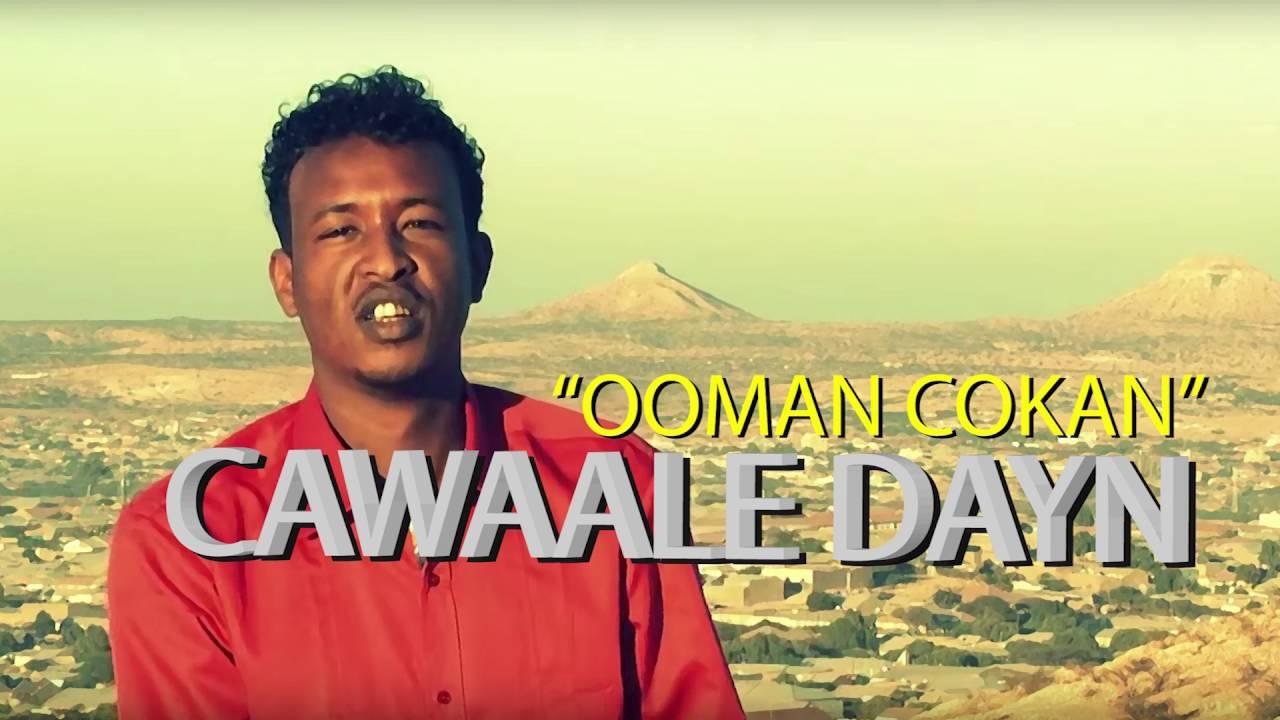 Cawaale dayr songs